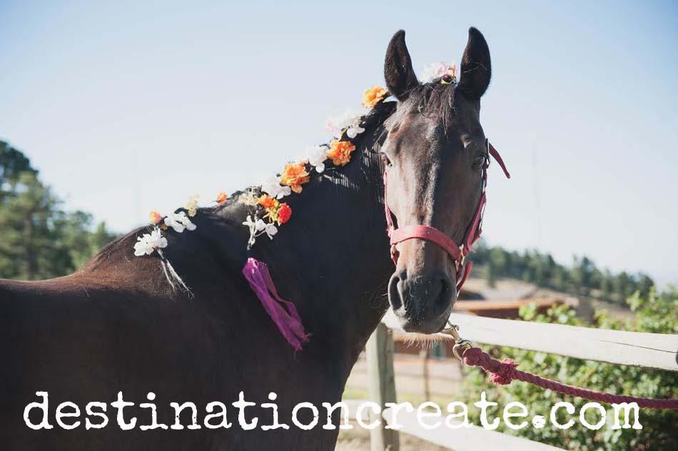 rustic-chic colorado mountain wedding